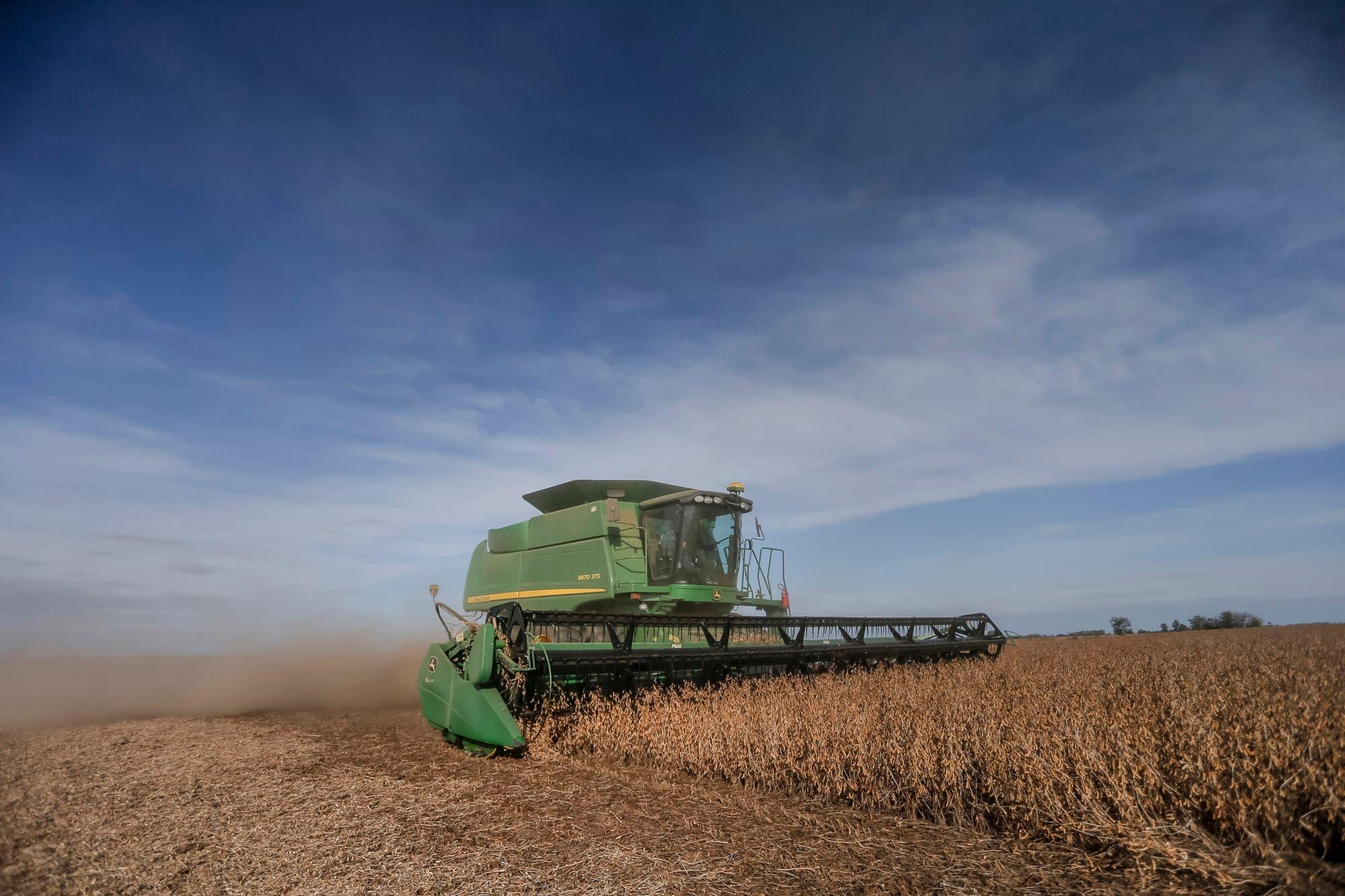 Censo: el 1,08% de las explotaciones agropecuarias tienen el 36,4% de las tierras