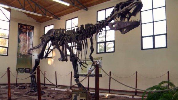 los-dinosaurios-de-la-patagonia-vuelven-en-formato-de-serie-documental